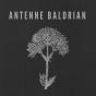 Podcast Download - Folge Baldrian 007 - Igelbestrahlung online hören