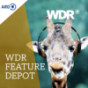 WDR Feature-Depot Podcast Download