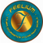 Feelium Token Podcast Download