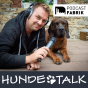 Hundetalk Podcast Download