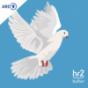 hr2 Camino - Religionen auf dem Weg Podcast Download