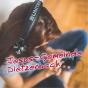 Predigten der Jesus-Gemeinde Dietzenbach e.V. Podcast Download