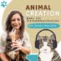 Podcast Download - Folge Was tun, wenn dein Tier sensibel auf Reize reagiert? online hören
