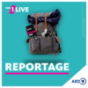 1LIVE - Plan B Reportage Podcast Download