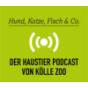 Hund, Katze, Fisch & Co. - der Haustier Podcast von Kölle-Zoo