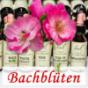 Bachblüten Therapie