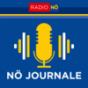 Radio NÖ Journal um 17.00 Podcast Download