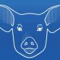 Der Schweinecast Podcast Download