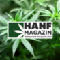 Hanf Magazin Podcast Download