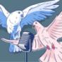Bodybuildertauben Podcast Download