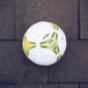 NSU Handball Bundesliga | Fankurve