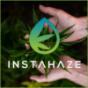 Podcast : CBD, Cannabis und Hanf | InstaHaze