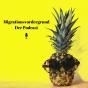 Migrationsvordergrund Podcast Download