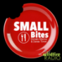 Small Bites Radio
