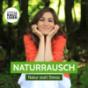 Naturrausch - Stress abbauen | Stress vermeiden | Stressbewältigung | Stress vermeiden Podcast Download