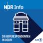 Die Korrespondenten in Neu-Delhi Podcast Download
