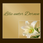 Lilie unter Dornen Podcast Download
