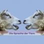 Die Sprache der Tiere Podcast Download