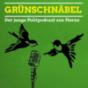 Podcast Download - Folge Grünschnäbel 009 - Systemfrage und Selbstkritik online hören
