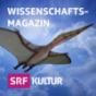 Wissenschaftsmagazin Podcast Download