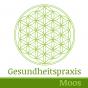 Gesundheitspraxis Moos Podcast Download