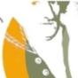Wochenblatt-Podcast für die OG Nentershausen