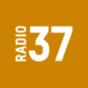 RADIO37 - Der Bornholm-Podcast Podcast Download