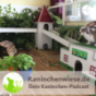 Kaninchenwiese.de Dein Kaninchen-Podcast Podcast Download