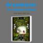 Podcast Download - Folge Graulwasser 17 | Berry und ein Knopf online hören