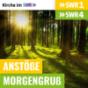 Anstöße SWR1 RP - Morgengruß SWR4 RP - Kirche im SWR Podcast Download