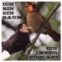 Ich bin ein Baum Podcast Download