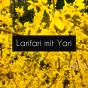 Larifari mit Yari Podcast Download