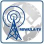 Radio Knuffingen - Miniatur Wunderland Hamburg Podcast herunterladen