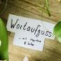 Wortaufguss Podcast Download