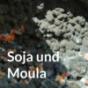 Soja und Moula Podcast Download