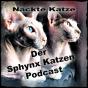 Nackte Katze - Der Sphynx Katzen Podcast Podcast Download