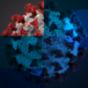 Coronavirus - Alltag einer Pandemie
