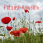 Podcast-Anwältin Podcast Download