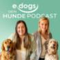 edogs - Der Hunde Podcast Download