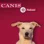 Der CANIS-Podcast – Hundeexpert:innen ausgefragt