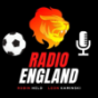 Der Premier League Podcast - Das Original