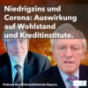 Der WBU Wirtschafts Podcast Podcast Download