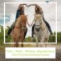 Feld-,Wald-,Wiesen -Equestrians - der Freizeitreiterpodcast