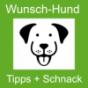wunsch-hund Schnack - der Podcast mit Wunschhund Podcast Download