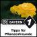 Tipps für Pflanzenfreunde - Bayern 1