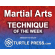 Martial Arts Technique of the Week