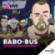 1LIVE Babo-Bus Downlaod