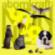 Podcast : Atomkraft 9/9