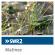 SWR2 - Matinee Downlaod