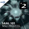 Saal 101 - Dokumentarhörspiel zum NSU-Prozess